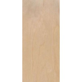 "RNB20 - Rotary Natural Birch Standard Duty Comm. Flush Doors 20 min. Fire Rated (1-3/4"")"